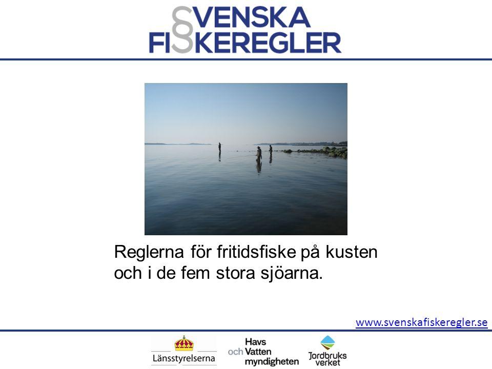www.svenskafiskeregler.se Reglerna för fritidsfiske på kusten och i de fem stora sjöarna.