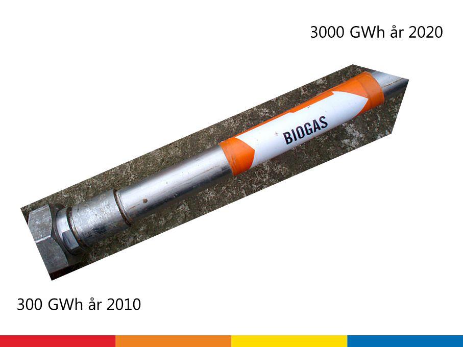 300 GWh år 2010 3000 GWh år 2020