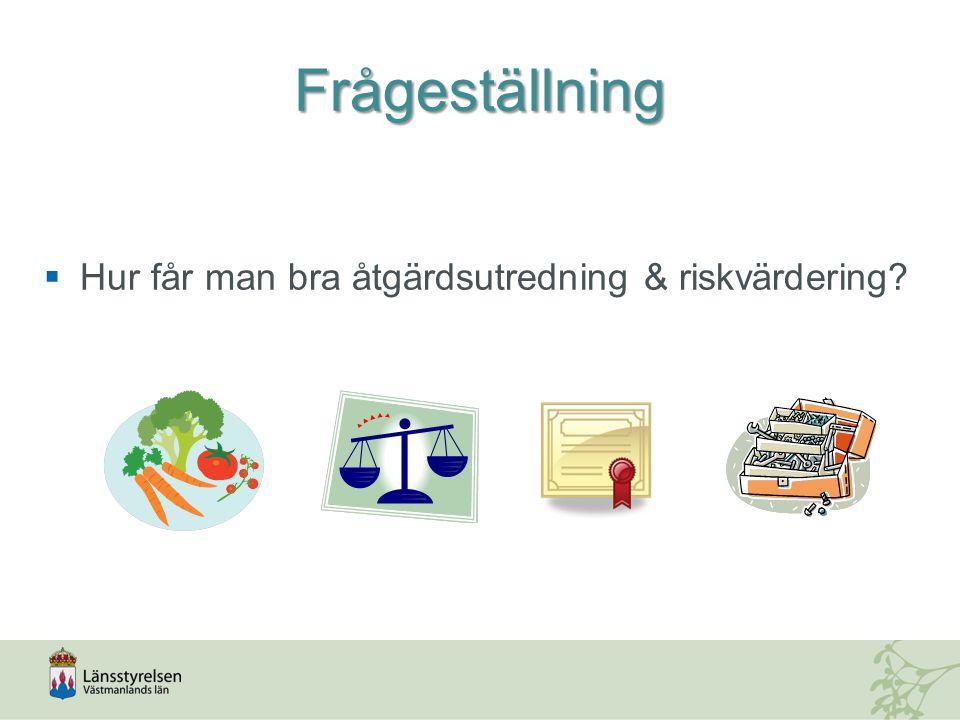 Frågeställning  Hur får man bra åtgärdsutredning & riskvärdering
