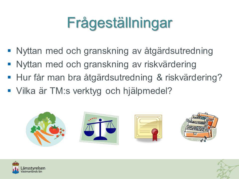 Frågeställningar  Nyttan med och granskning av åtgärdsutredning  Nyttan med och granskning av riskvärdering  Hur får man bra åtgärdsutredning & riskvärdering.