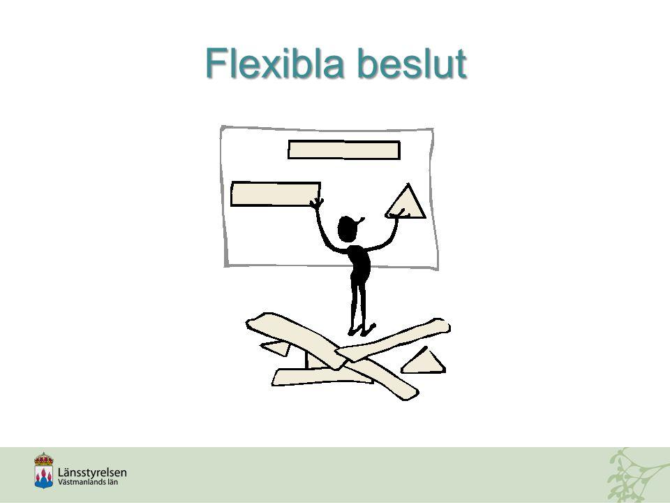 Flexibla beslut