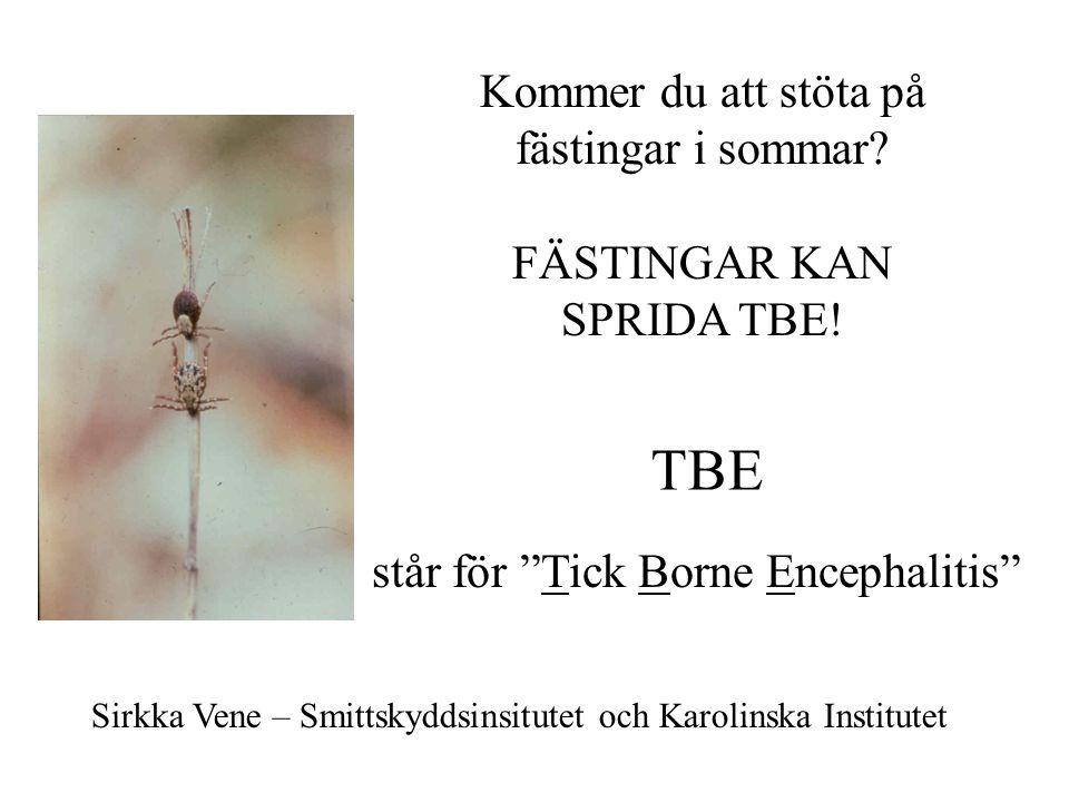 TBE står för Tick Borne Encephalitis Kommer du att stöta på fästingar i sommar.