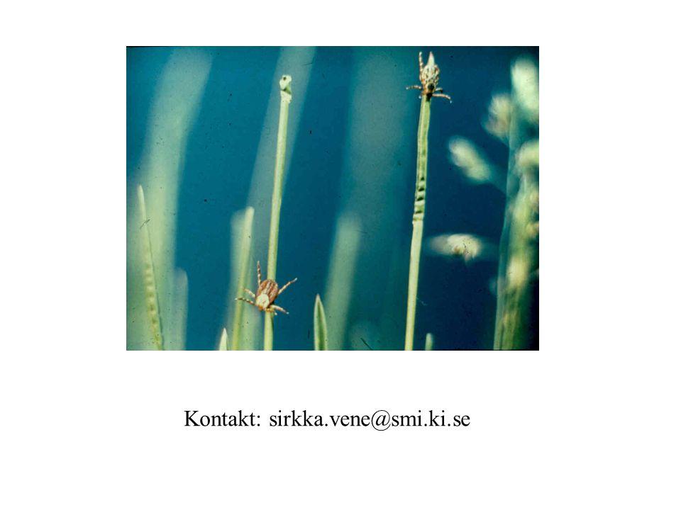 Kontakt: sirkka.vene@smi.ki.se