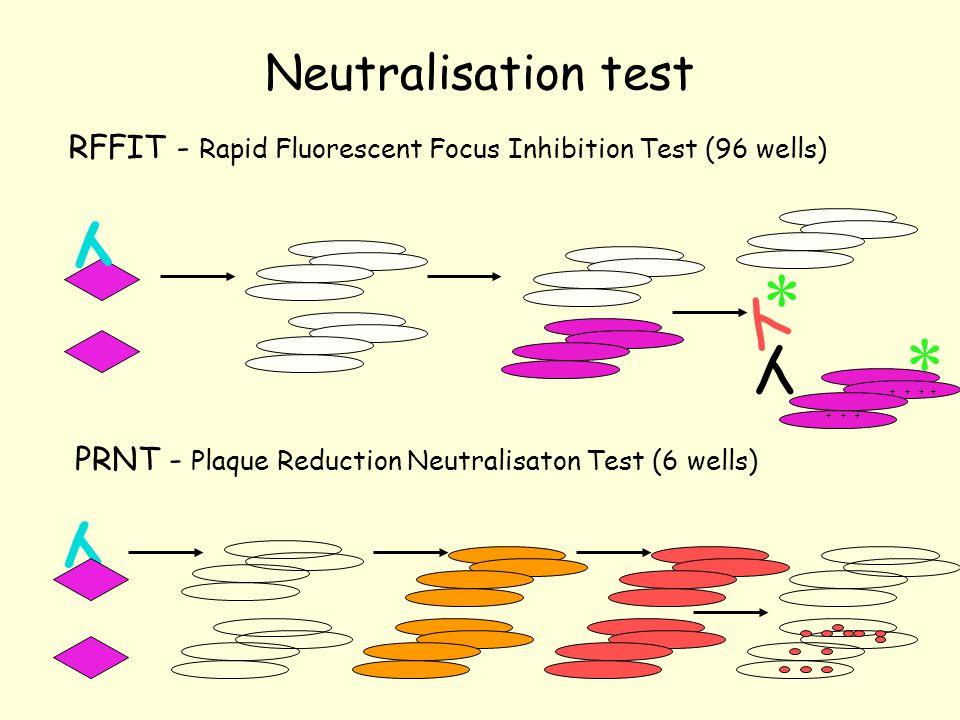 Neutralisation test RFFIT - Rapid Fluorescent Focus Inhibition Test (96 wells) PRNT - Plaque Reduction Neutralisaton Test (6 wells) Y Y Y Y * + + + + + *