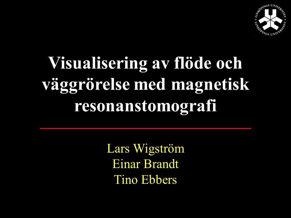 Visualization of Intra-cardiac Flow Patterns Based on Time-resolved 3D MRI Data Lars Wigström, M.Sc.