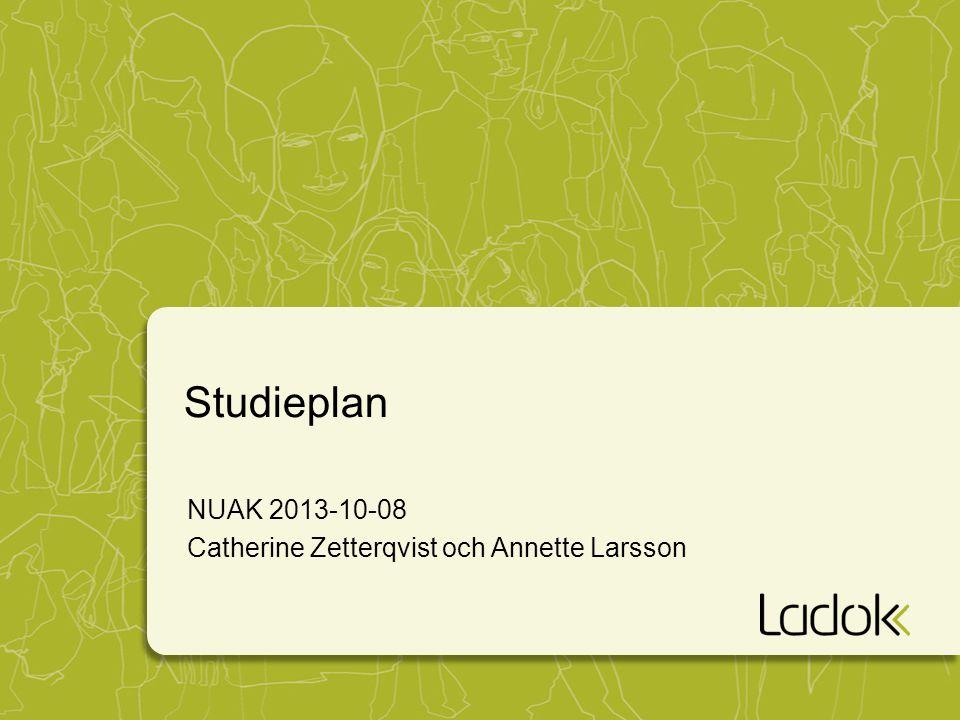 Studieplan NUAK 2013-10-08 Catherine Zetterqvist och Annette Larsson