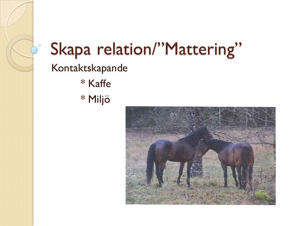 """Skapa relation/""""Mattering"""" Kontaktskapande * Kaffe * Miljö"""