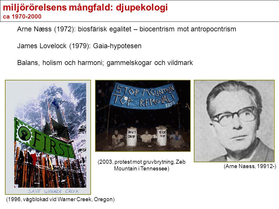 miljörörelsens mångfald: djupekologi ca 1970-2000 Arne Næss (1972): biosfärisk egalitet – biocentrism mot antropocntrism James Lovelock (1979): Gaia-h