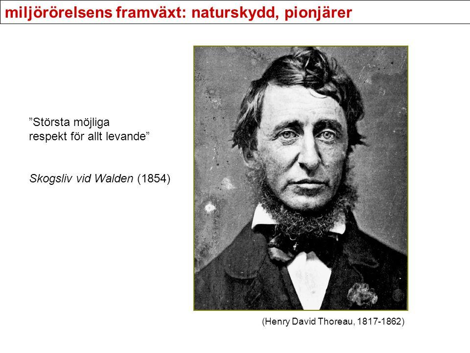 """miljörörelsens framväxt: naturskydd, pionjärer """"Största möjliga respekt för allt levande"""" Skogsliv vid Walden (1854) (Henry David Thoreau, 1817-1862)"""