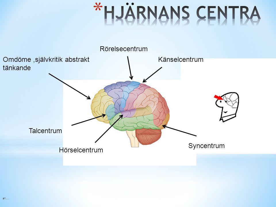 Omdöme,självkritik abstrakt tänkande Talcentrum Hörselcentrum Rörelsecentrum Känselcentrum Syncentrum ET……