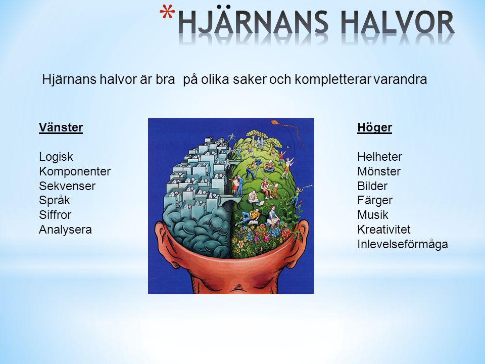 Hjärnans halvor är bra på olika saker och kompletterar varandra Vänster Logisk Komponenter Sekvenser Språk Siffror Analysera Höger Helheter Mönster Bi