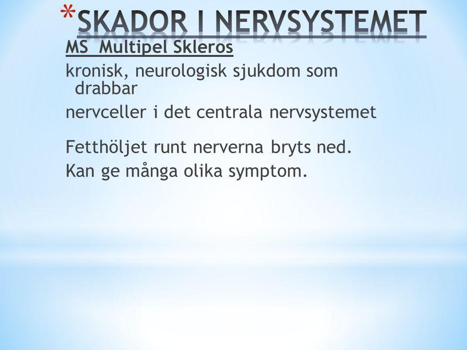 MS Multipel Skleros kronisk, neurologisk sjukdom som drabbar nervceller i det centrala nervsystemet Fetthöljet runt nerverna bryts ned. Kan ge många o