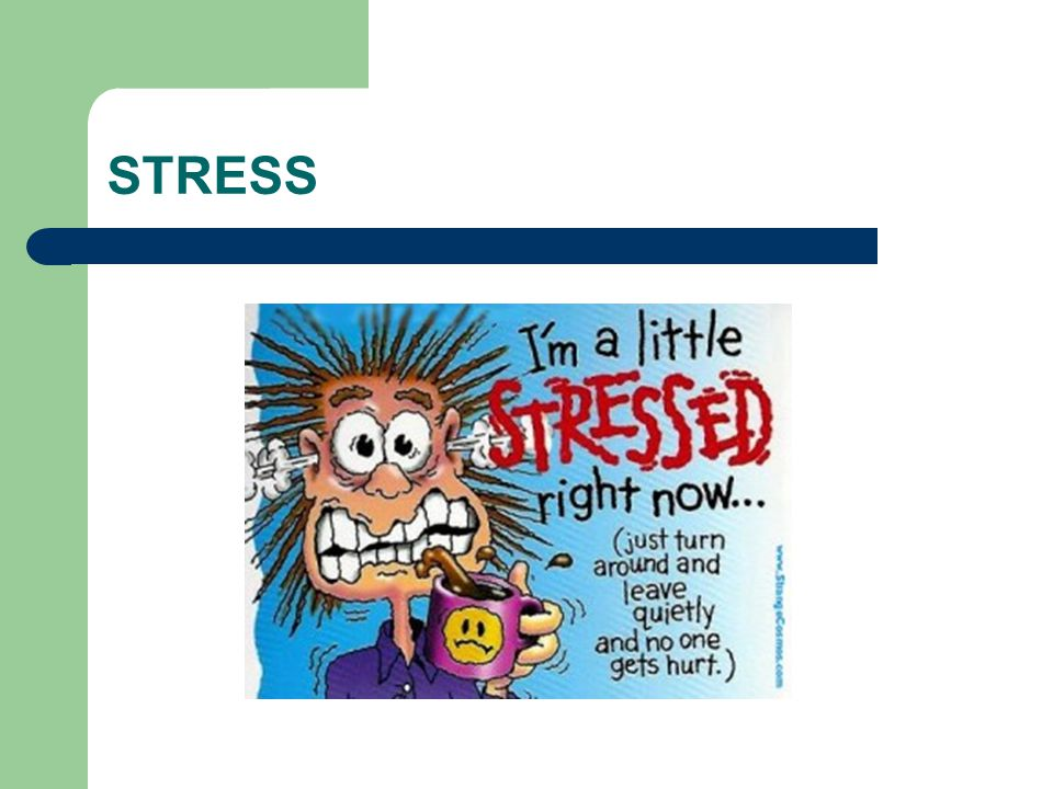 Innehåll Definitioner Myter och sanningar om stress Historik Symtom av stress Vad händer i kroppen.
