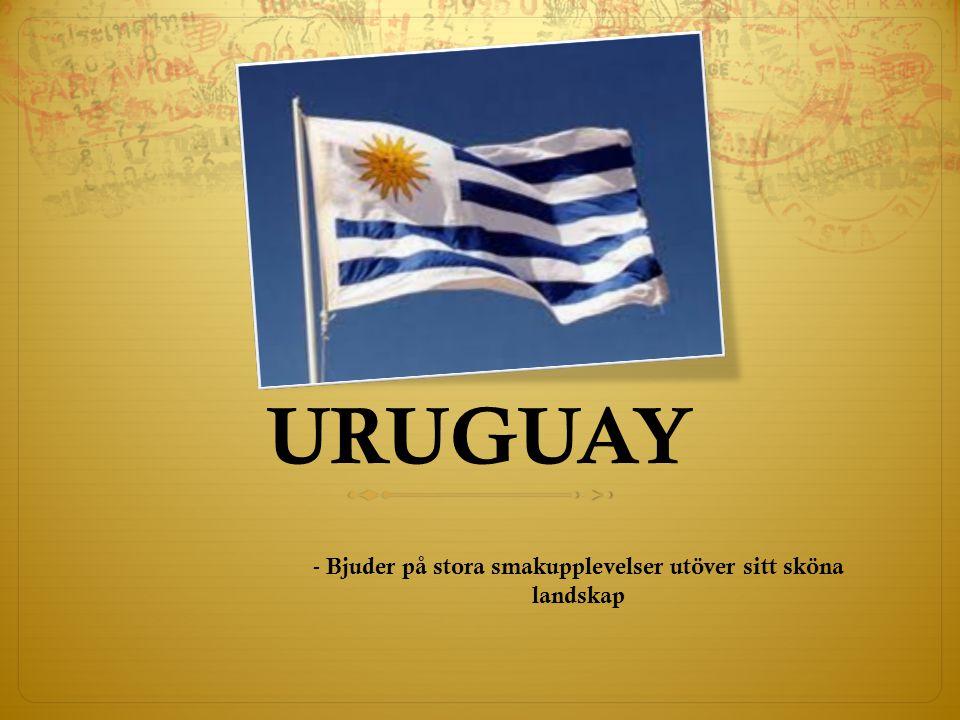 URUGUAY - Bjuder på stora smakupplevelser utöver sitt sköna landskap