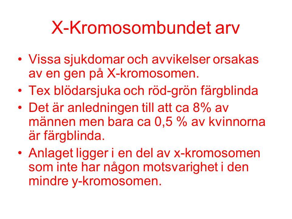 X-Kromosombundet arv Vissa sjukdomar och avvikelser orsakas av en gen på X-kromosomen. Tex blödarsjuka och röd-grön färgblinda Det är anledningen till