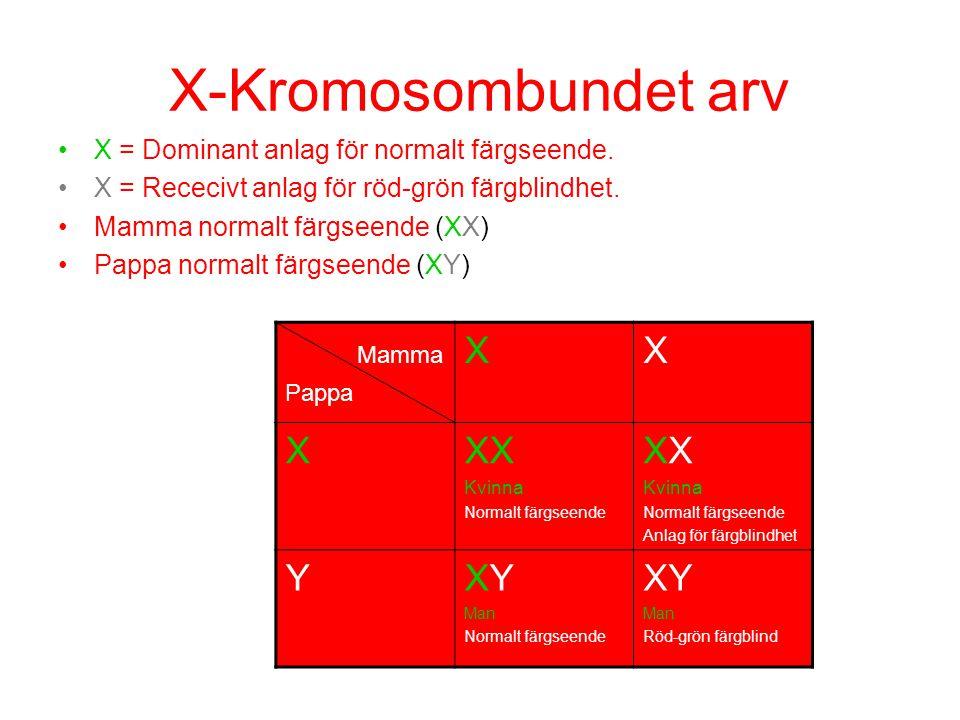 X-Kromosombundet arv X = Dominant anlag för normalt färgseende. X = Rececivt anlag för röd-grön färgblindhet. Mamma normalt färgseende (XX) Pappa norm