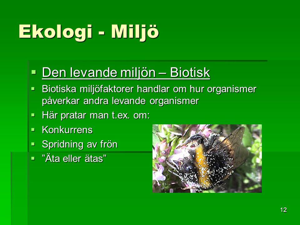12 Ekologi - Miljö  Den levande miljön – Biotisk  Biotiska miljöfaktorer handlar om hur organismer påverkar andra levande organismer  Här pratar ma