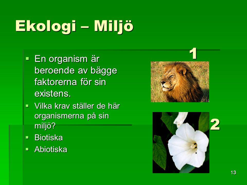 13 Ekologi – Miljö  En organism är beroende av bägge faktorerna för sin existens.  Vilka krav ställer de här organismerna på sin miljö?  Biotiska 
