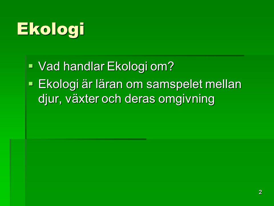 3 Ekologi  Vad gör en ekolog.
