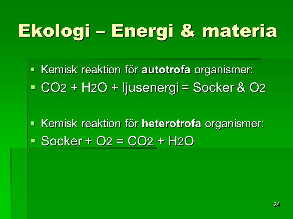 24 Ekologi – Energi & materia  Kemisk reaktion för autotrofa organismer:  CO 2 + H 2 O + ljusenergi = Socker & O 2  Kemisk reaktion för heterotrofa