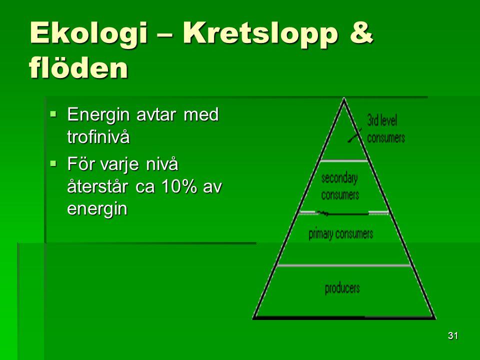 31 Ekologi – Kretslopp & flöden  Energin avtar med trofinivå  För varje nivå återstår ca 10% av energin