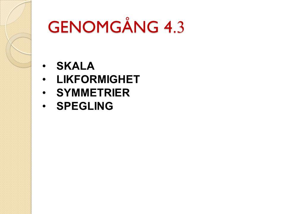 GENOMGÅNG 4.3 SKALA LIKFORMIGHET SYMMETRIER SPEGLING