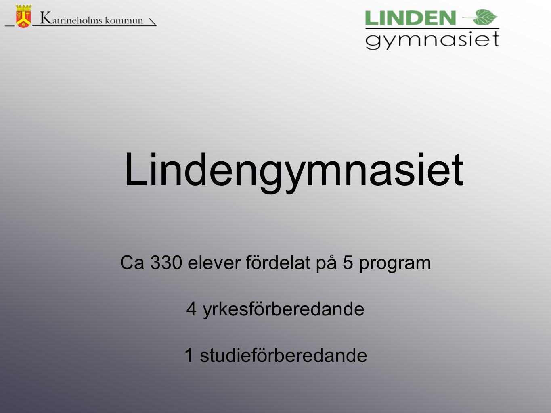 Ca 330 elever fördelat på 5 program 4 yrkesförberedande 1 studieförberedande Lindengymnasiet