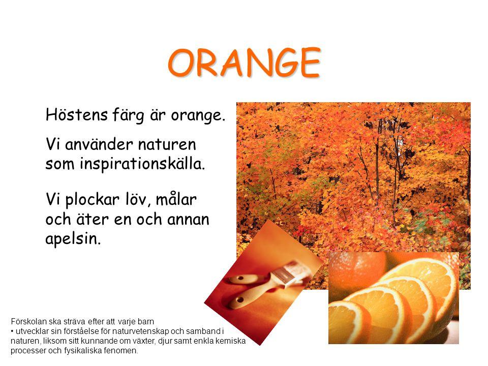 ORANGE Höstens färg är orange. Vi använder naturen som inspirationskälla. Vi plockar löv, målar och äter en och annan apelsin. Förskolan ska sträva ef
