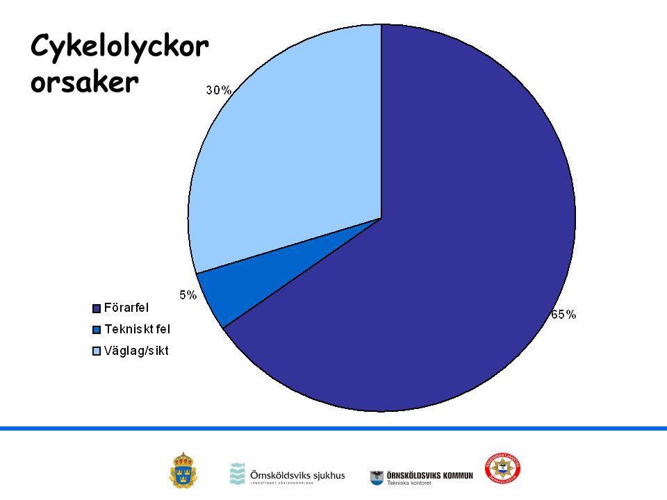 Cykelolyckor orsaker