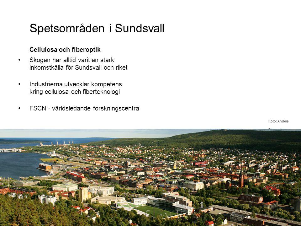 Spetsområden i Sundsvall Cellulosa och fiberoptik Skogen har alltid varit en stark inkomstkälla för Sundsvall och riket Industrierna utvecklar kompetens kring cellulosa och fiberteknologi FSCN - världsledande forskningscentra Foto: Anders Thorsell