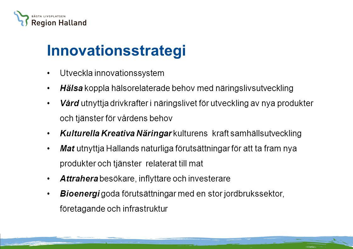Innovationsstrategi Utveckla innovationssystem Hälsa koppla hälsorelaterade behov med näringslivsutveckling Vård utnyttja drivkrafter i näringslivet för utveckling av nya produkter och tjänster för vårdens behov Kulturella Kreativa Näringar kulturens kraft samhällsutveckling Mat utnyttja Hallands naturliga förutsättningar för att ta fram nya produkter och tjänster relaterat till mat Attrahera besökare, inflyttare och investerare Bioenergi goda förutsättningar med en stor jordbrukssektor, företagande och infrastruktur