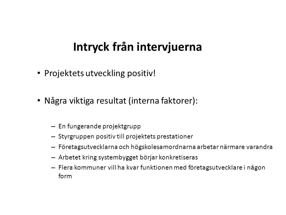 Projektets utveckling positiv! Några viktiga resultat (interna faktorer): – En fungerande projektgrupp – Styrgruppen positiv till projektets prestatio