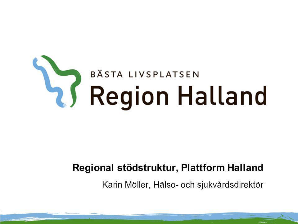 Regional stödstruktur, Plattform Halland Karin Möller, Hälso- och sjukvårdsdirektör