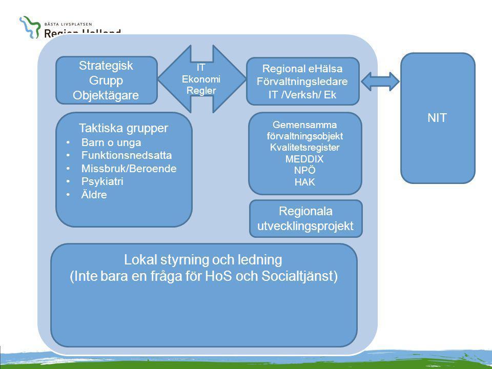 Strategisk Grupp Objektägare Lokal styrning och ledning (Inte bara en fråga för HoS och Socialtjänst) Regional eHälsa Förvaltningsledare IT /Verksh/ E