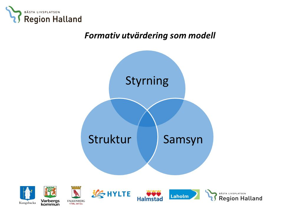 Formativ utvärdering som modell Styrning SamsynStruktur