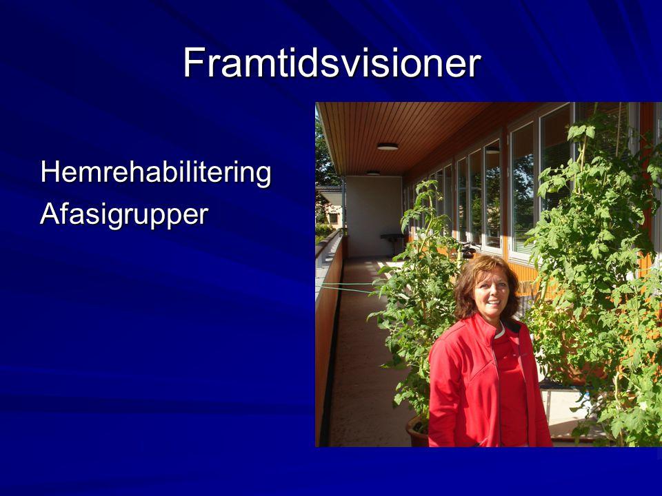 Framtidsvisioner HemrehabiliteringAfasigrupper