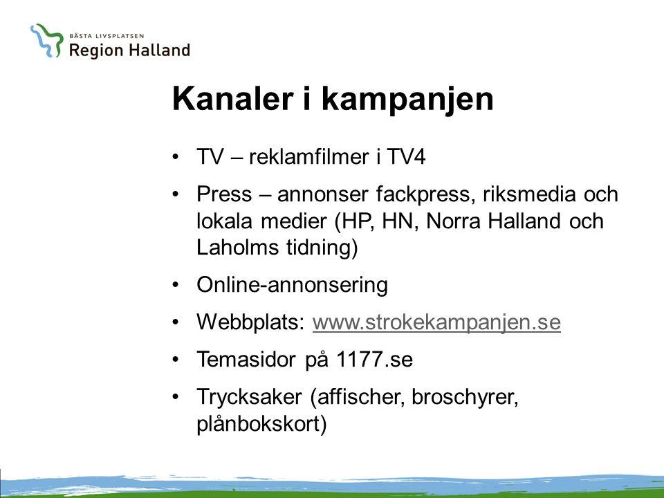 Utvecklingsarbete i Halland Snabbare trombolysbehandling Karotiskirurgi Blodtryckssänkande medel Rökstopp Rehabilitering