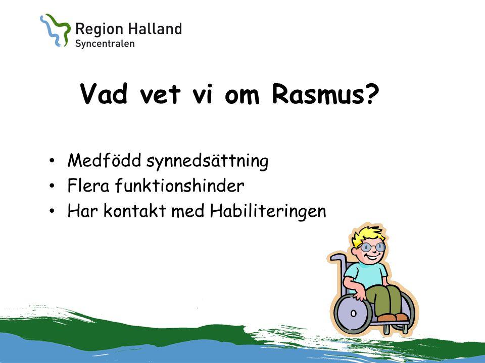 Vad vet vi om Rasmus? Medfödd synnedsättning Flera funktionshinder Har kontakt med Habiliteringen