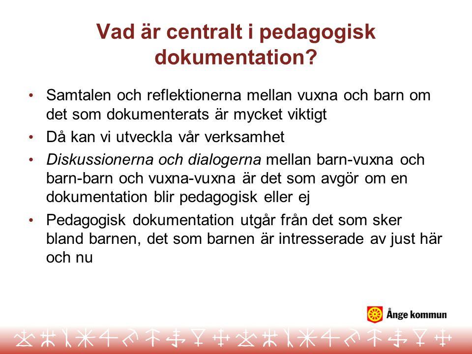 Vad är centralt i pedagogisk dokumentation? Samtalen och reflektionerna mellan vuxna och barn om det som dokumenterats är mycket viktigt Då kan vi utv