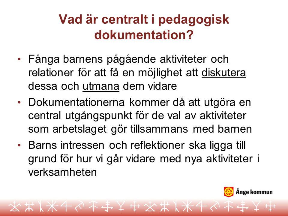 Vad är centralt i pedagogisk dokumentation? Fånga barnens pågående aktiviteter och relationer för att få en möjlighet att diskutera dessa och utmana d