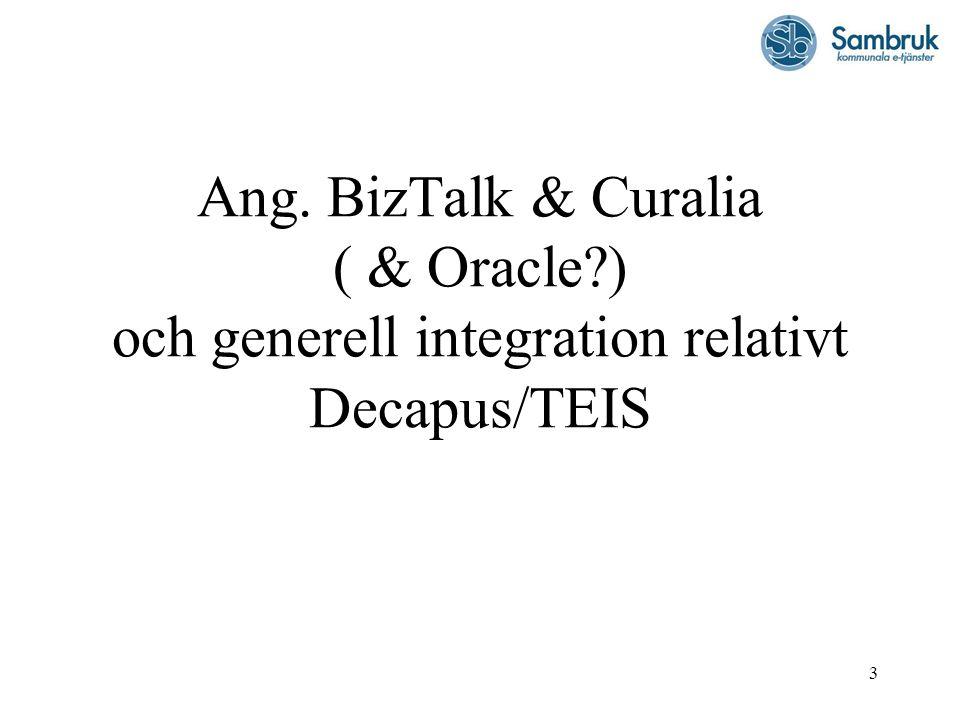 3 Ang. BizTalk & Curalia ( & Oracle?) och generell integration relativt Decapus/TEIS