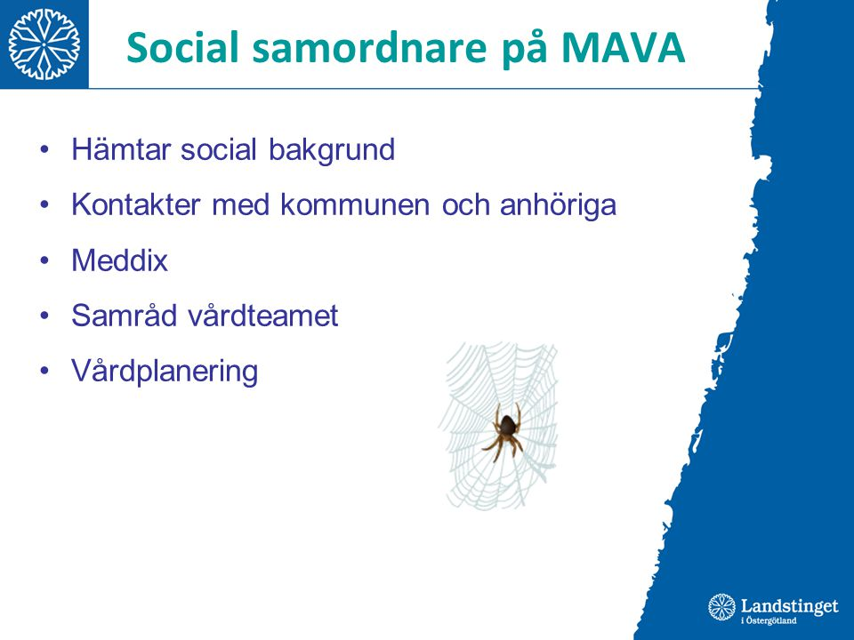 Social samordnare på MAVA Ett inspirerande arbete med många kontakter och ett stort eget ansvar.