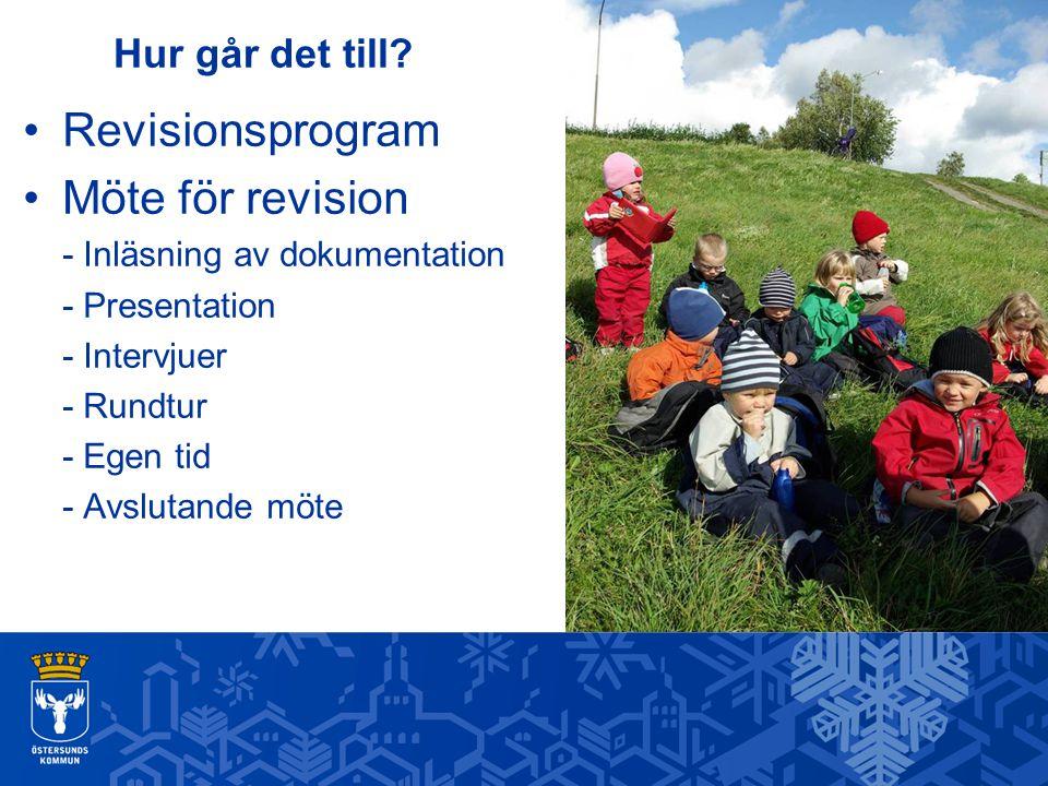 Hur går det till? Revisionsprogram Möte för revision - Inläsning av dokumentation - Presentation - Intervjuer - Rundtur - Egen tid - Avslutande möte