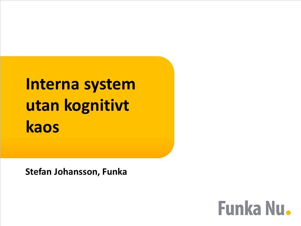 Interna system utan kognitivt kaos Stefan Johansson, Funka