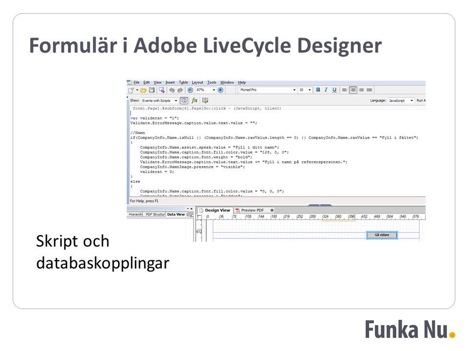 Formulär i Adobe LiveCycle Designer Skript och databaskopplingar