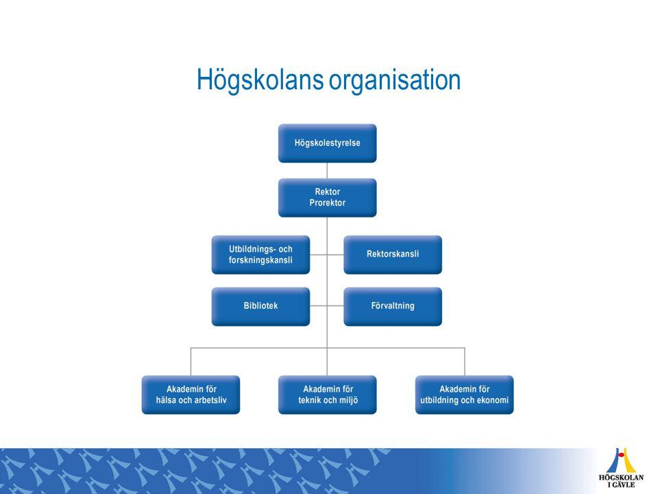 Högskolans organisation