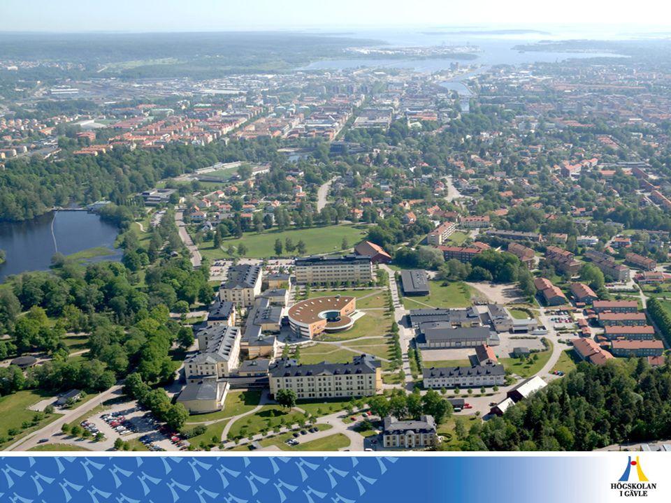 HÖGSKOLAN I GÄVLE – AVDELNINGEN FÖR KOMMUNIKATION OCH SAMVERKAN – MAJ 2008