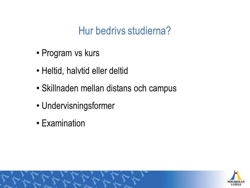 Hur bedrivs studierna? Program vs kurs Heltid, halvtid eller deltid Skillnaden mellan distans och campus Undervisningsformer Examination
