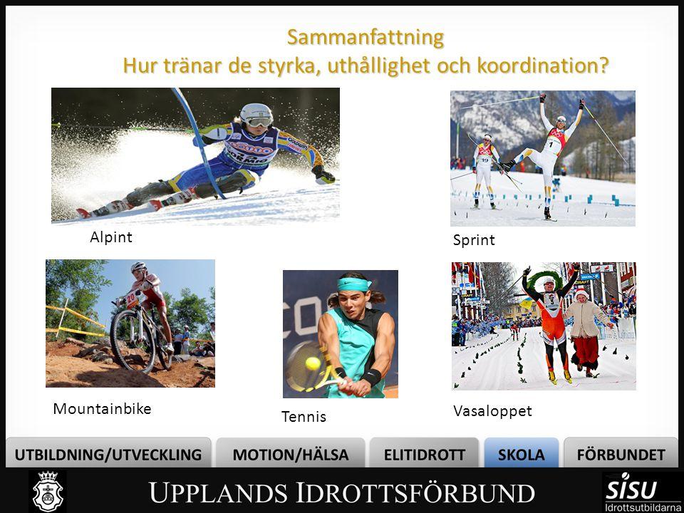 Sammanfattning Hur tränar de styrka, uthållighet och koordination? Sprint Vasaloppet Alpint Mountainbike Tennis