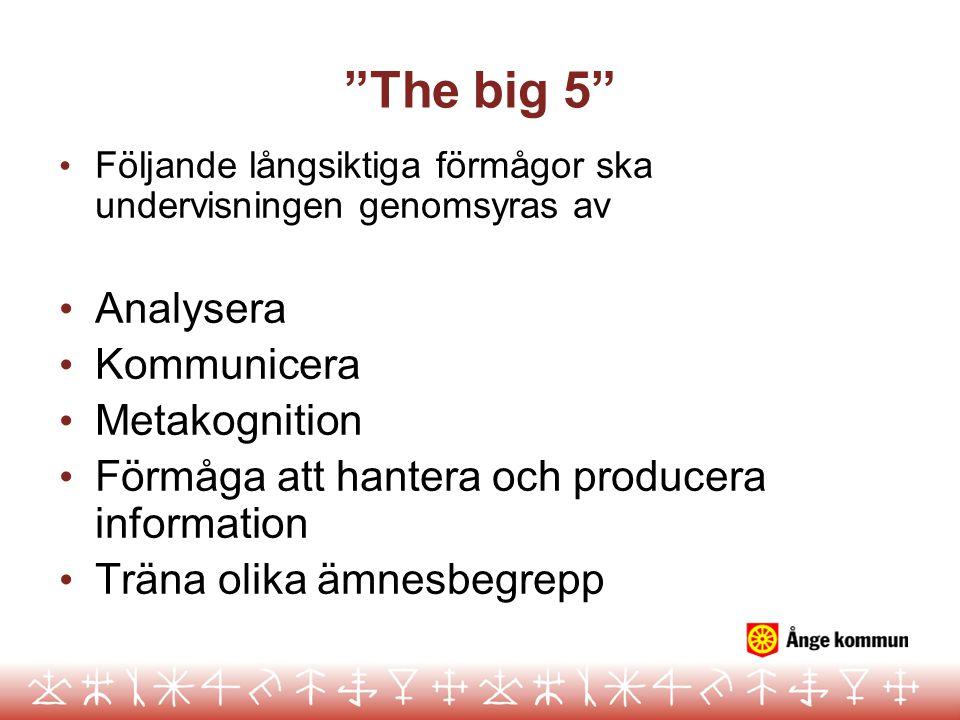 """""""The big 5"""" Följande långsiktiga förmågor ska undervisningen genomsyras av Analysera Kommunicera Metakognition Förmåga att hantera och producera infor"""